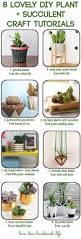 8 lovely plant succulent diy craft tutorials dear handmade life