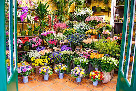 flower store royalty free flower store pictures images and stock photos istock