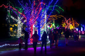 christmas light displays in ohio endearing christmas lights near me super must see light displays in