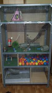 How To Build A Rabbit Hutch And Run Best 25 Ferret Cage Ideas On Pinterest Rat Cage Pet Cage And