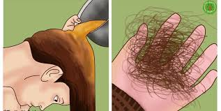 how to make hair strong stop hair loss naturally simple and easy to make solution for