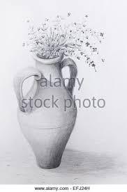 flower pot drawing sketch stock photos u0026 flower pot drawing sketch