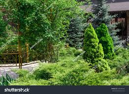 Modern Landscape Beautiful Landscape Design Evergreen Trees Shrubs Stock Photo