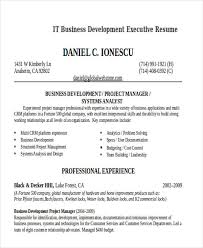 It Resume Samples For Experienced Professionals by 21 It Resume Templates Free U0026 Premium Templates