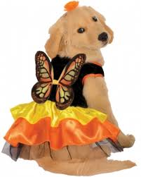 Zombie Dog Halloween Costume Pet Costumes Super Selection Pet Costumes Halloween