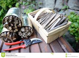 utensil for building an insect shelter for wild bees on a bench
