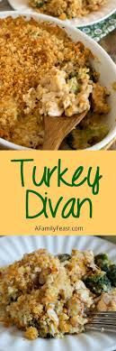 best 25 leftover turkey recipes ideas on left