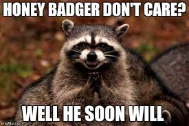 Meme Honey Badger - evil plotting raccoon meme imgflip
