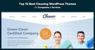 cleaning themes png