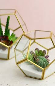 terrarium displays containers u0026 supplies 20 60 saveoncrafts