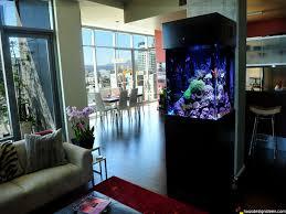 Youtube Wohnzimmer Ideen Kleines Aquarium Wohnzimmer Aquarium Wohnzimmer Youtube