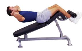 Decline Bench Leg Raises August 2013 Gym Excercise U0026 Fitness Workouts