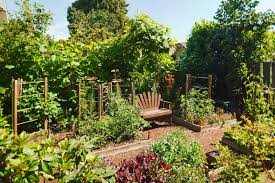 backyard food garden ideas u2013 home design and decorating