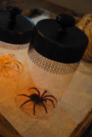 halloween spiders 736 best halloween images on pinterest halloween stuff