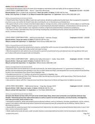 professional resume and cover letter writing services classic executive professional resume with cover letter