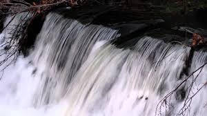 waterfall bronx river inside new york botanical garden bronx