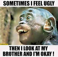 Okay Then Meme - sometimes i feel ugly then i look at my brother and i m okay