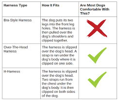 Comfortable Strap On Harness A Buyer U0027s Guide To Dog Harnesses