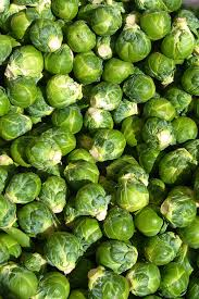 brussels sprout wikipedia