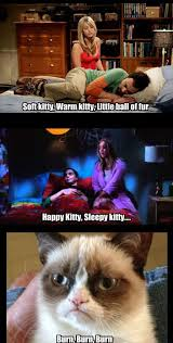 Sleepy Kitty Meme - soft kitty little kitty