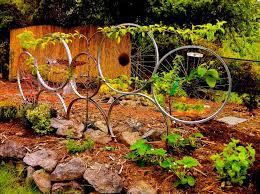 training wheels bike wheel trellis with espalier apple tree with