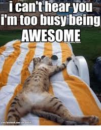 Memes About Being Awesome - 25 best memes about being awesome being awesome memes