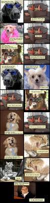 Law Dog Meme - reunion dog fort know your meme