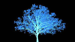 graphic blowing tree with alpha channel stock footage