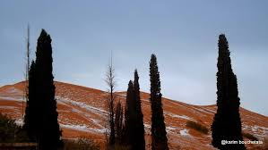 snow falls in the sahara desert for the first time since 1979 and