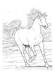 25 horse coloring pages ideas simple