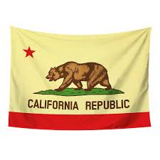 American Flag Tapestry Wall Hanging Amazon Com California Flag Tapestry Wall Hanging Ca Republic