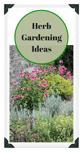 133 best herb garden plans ideas tips images on pinterest