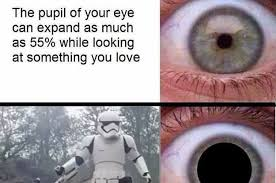 Star Wars Love Meme - people are obsessed with this random star wars the force awakens