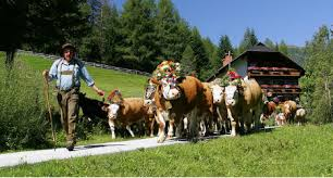 six unique traditions that austrians to the local