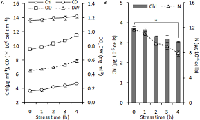 frontiers chloroplasts isolation from chlamydomonas reinhardtii