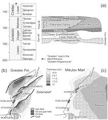 depositional environment and source potential of jurassic coal