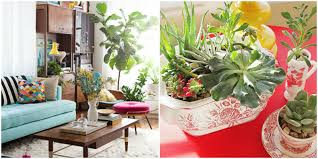 How To Decorate Your House How To Decorate With Houseplants Best Houseplant Decor
