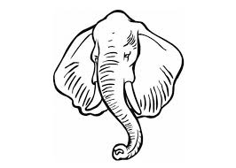 coloring pictures animals africa coloring pages wild