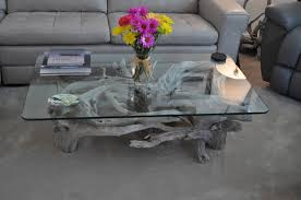 coffee tables breathtaking dsc driftwood coffee table glass top