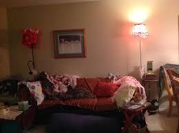3 Bedroom Apartments Bellevue Wa Sparc Apartments For Rent In Bellevue Wa Forrentcom 3 Bedroom