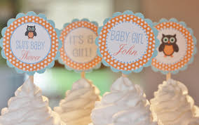 12 orange blue baby shower owl theme cupcake or cake