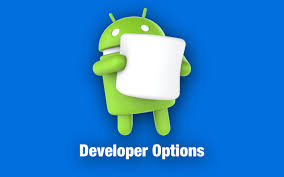 developer android enable developer options in android 6 0 marshmallow how to