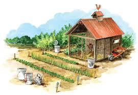 free homemade liquid fertilizers organic gardening mother
