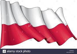 vector illustration of a waving national polish flag without the