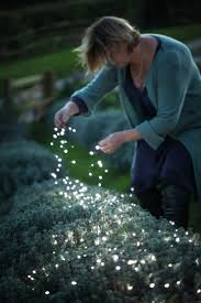 Red Heart Fairy Lights by Best 25 Outdoor Fairy Lights Ideas On Pinterest Garden Fairy