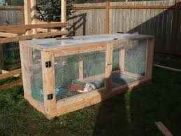 Backyard Quail Pens And Quail Housing by Quail Coop Youtube