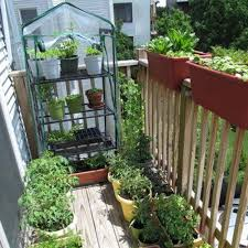 amazon com 4 tier mini greenhouse portable deck patio greenhouse