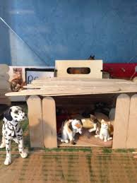 Our Lounge Inside Is Our Cats And Kittens And Outside Is Our Dog