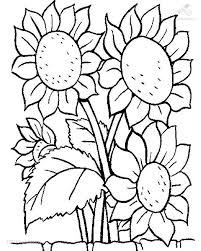flowers coloring page funny coloring