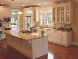kitchen awesome ikea kitchen cabinets reviews style home design
